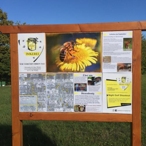biene-blühwiese-golf-und-natur-imkerei-webers-honigtopf-honigbiene-westliche-honigbiene-bienen-im-winter-dunkle-biene-biene-beine-männnliche-bienen-der-biern-biene-von-oben-bienen-alter